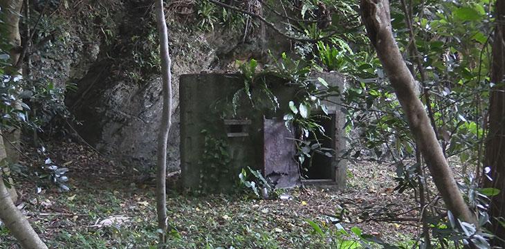 夜明け前のうた 消された沖縄の障害者